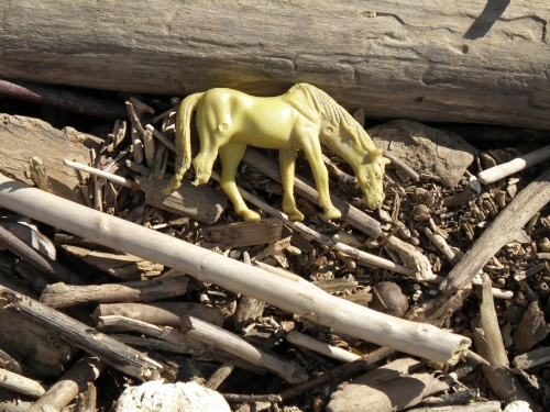 Small yellow plastic horse with chewed off leg, Falls of the Ohio