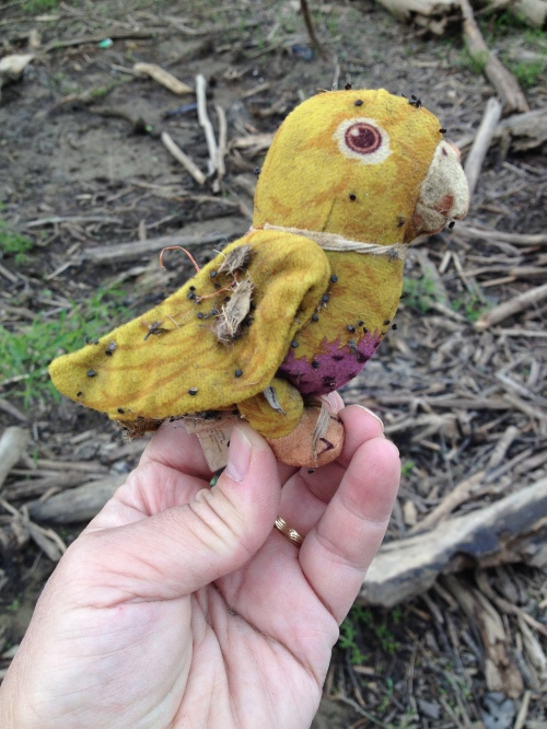 Plush Parrot Toy, Falls of the Ohio, May 2015