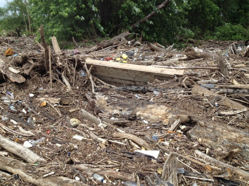 Driftwood mound with partially exposed wooden boat dock, Falls of the Ohio, May 2015