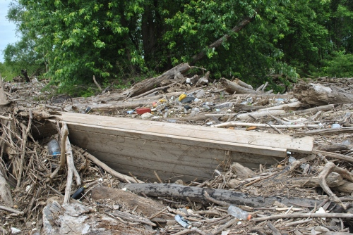 Wooden boat dock on debris pile, Falls of the Ohio, May 2015