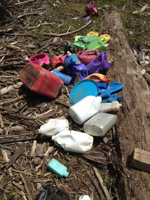 Freshly gathered plastic jugs, Falls of the Ohio, June 2015