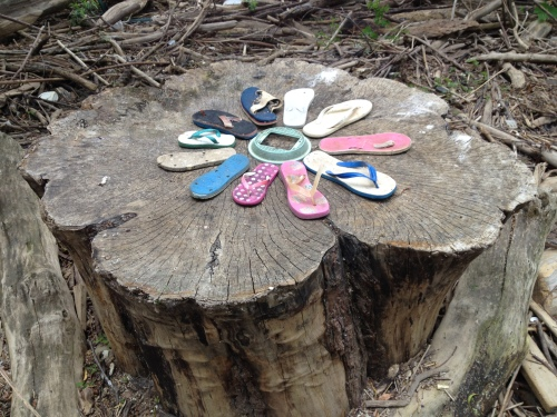 """Stump Flower"", found flip flops, Falls of the Ohio, June 2015"