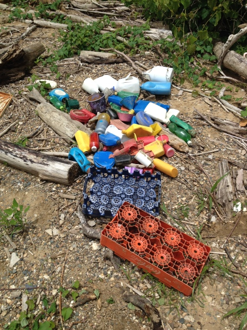 The days found plastic, mid  June 2015, Falls of the Ohio