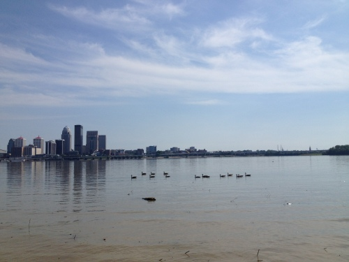 Skyline of Louisville with Canada Geese swimming, Late July 2015