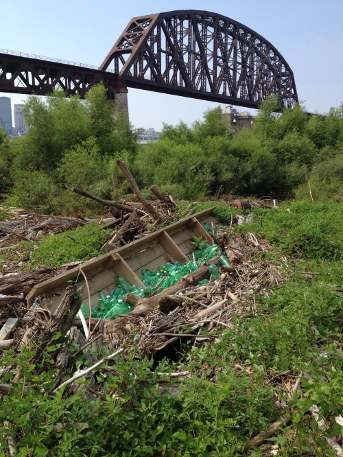 My green bottle piece after the latest flood, late July 2015, Falls of the Ohio