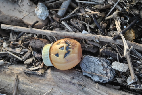 Small, plastic jack-o-lantern bottle laying in the driftwood, Falls of the Ohio, 2015