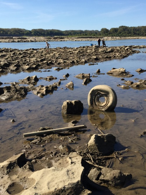 Fishing at the exposed fossil beds at the Falls of the Ohio, Oct. 2015