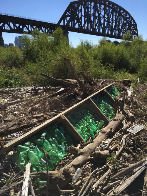 Green Bottle piece at the Falls of the Ohio, October 2015