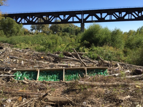 Green Bottles, Falls of the Ohio, October 2015