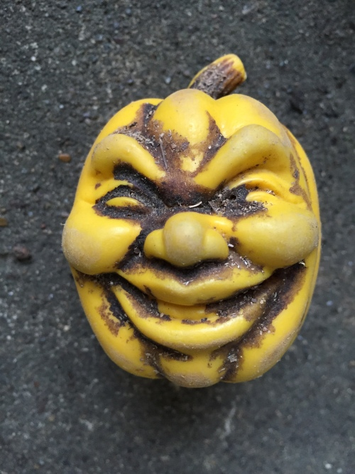Expressive face, plastic jack-o-lantern, Falls of the Ohio, 2015