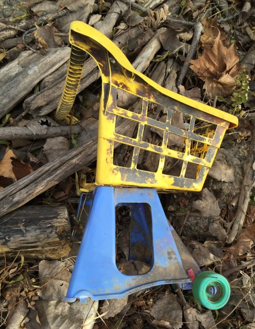 Ruined toy shopping cart, Falls of the Ohio, Nov. 2015