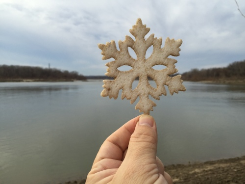 Found Christmas star in the shape of a snowflake, Falls of the Ohio, Dec. 2015