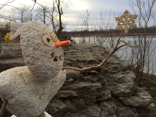 The Snow Star arrives, Falls of the Ohio, Dec. 2015