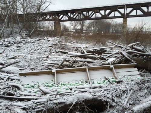 Site specific, green plastic bottle assemblage, Falls of the Ohio, Jan. 12, 2016