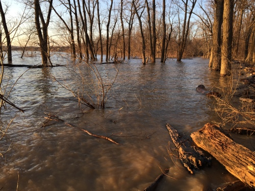 Sun down at a flooded Falls of the Ohio State Park, Feb. 7, 2016