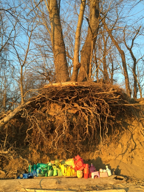 Riverbank Plastic Arrangement, Falls of the Ohio, Feb. 20, 2016
