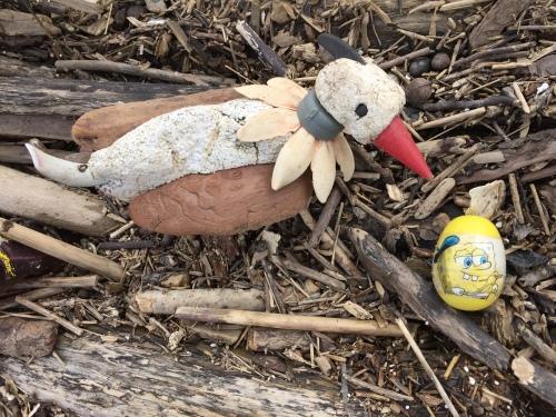 Heisenberg's Hammerkopf with Sponge Bob egg, Falls of the Ohio, March 20, 2016