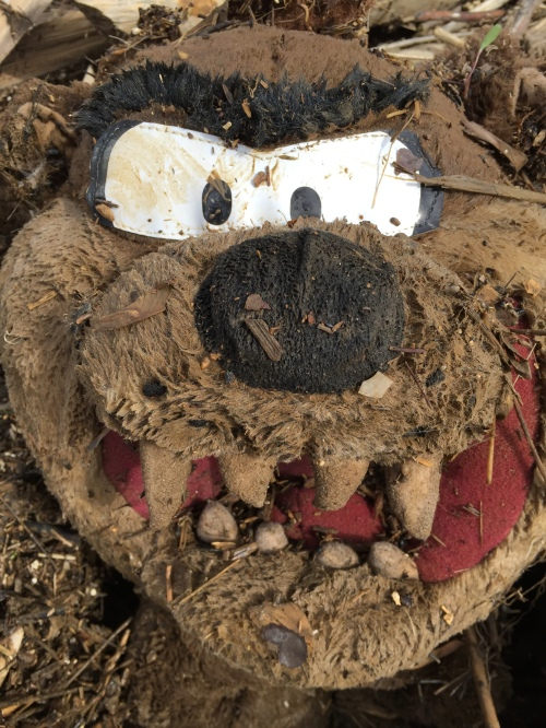 detail of the face on a Tasmanian Devil plush toy