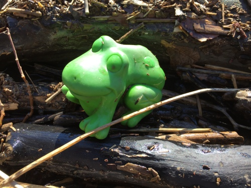 Found green plastic frog toy, Falls of the Ohio, Feb. 29, 2016