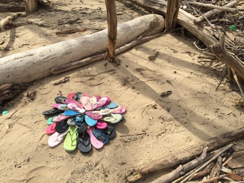 Flower made from found flip flops, Falls of the Ohio, March 6, 2016
