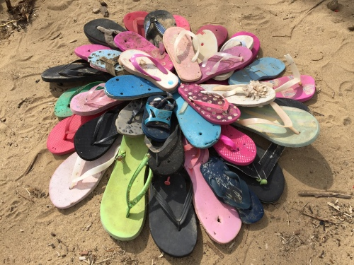 """""""Chrysanthemum"""", found flip flops at the Falls of the Ohio, March 6, 2016"""