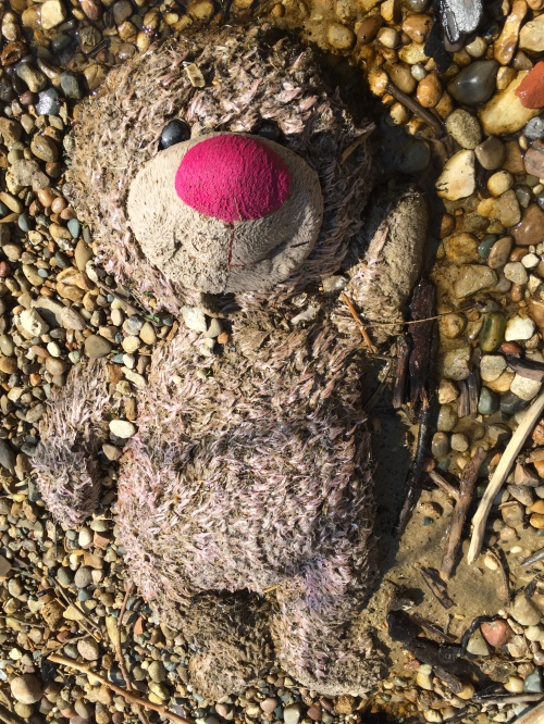 Large, plush Teddy Bear sinking into the gravel, late March 2016 at the Falls of the Ohio.