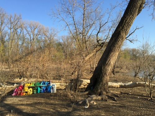 Plastic arrangement set up next to leaning tree, Falls of the Ohio, late March 2016