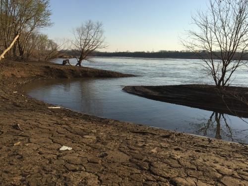 Small creek leading into the Ohio River, Falls of the Ohio,  late March 2016