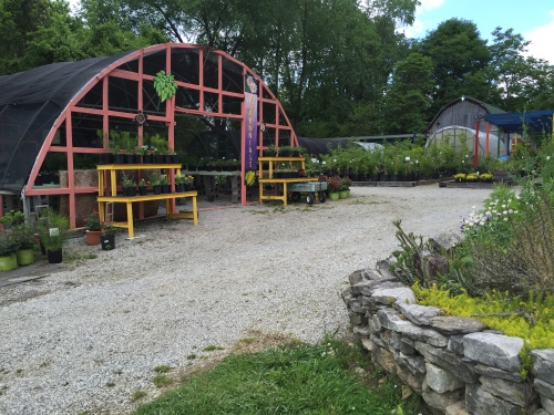 At Hidden Hill Nursery and Sculpture Garden in Utica, Indiana, May 2016