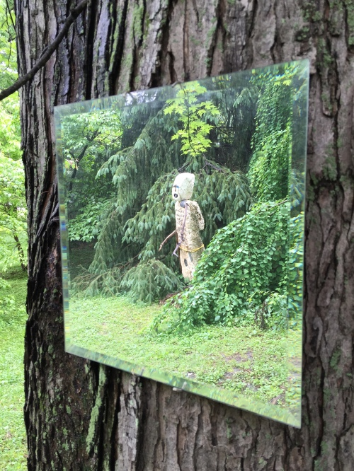 """Earth Knight"" reflected in a mirror mounted on a tree, Hidden Hill, May 2016"