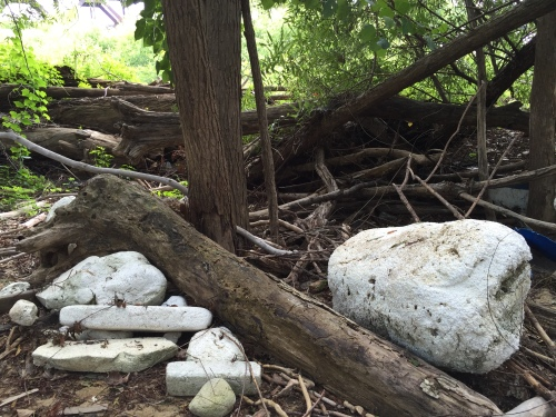 Styrofoam stash at the Falls of the Ohio, Aug. 2016