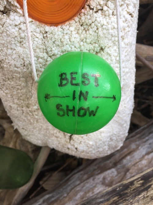 """Best in Show "" award...presented anonymously."